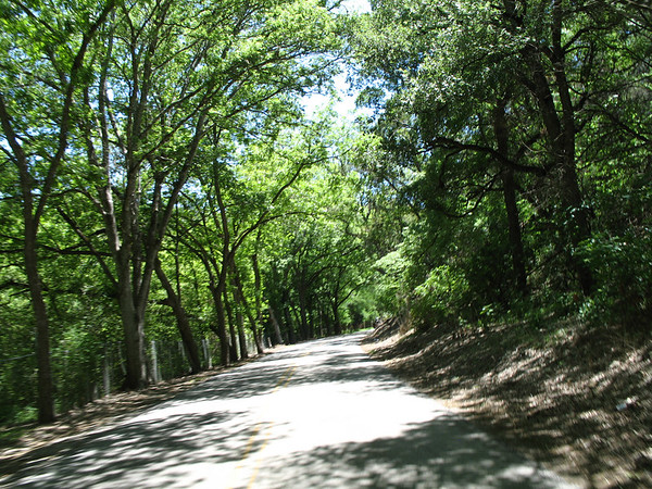 Texas Hill Country 4.06